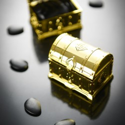 Malle aux trésors or