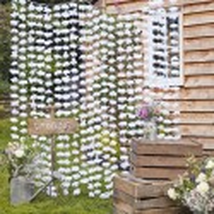 Rideau de fleurs blanches