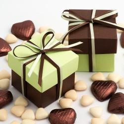 Boite à dragées chocolat et vert anis par 10
